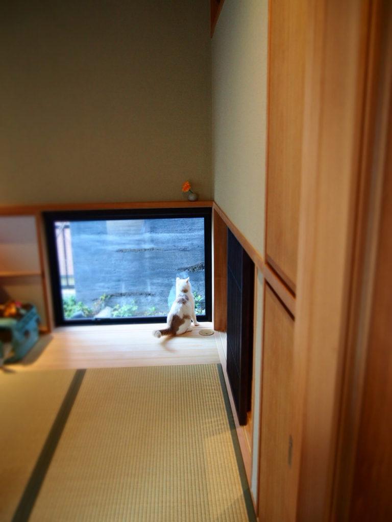 鎌倉の風土を考えたリフォーム