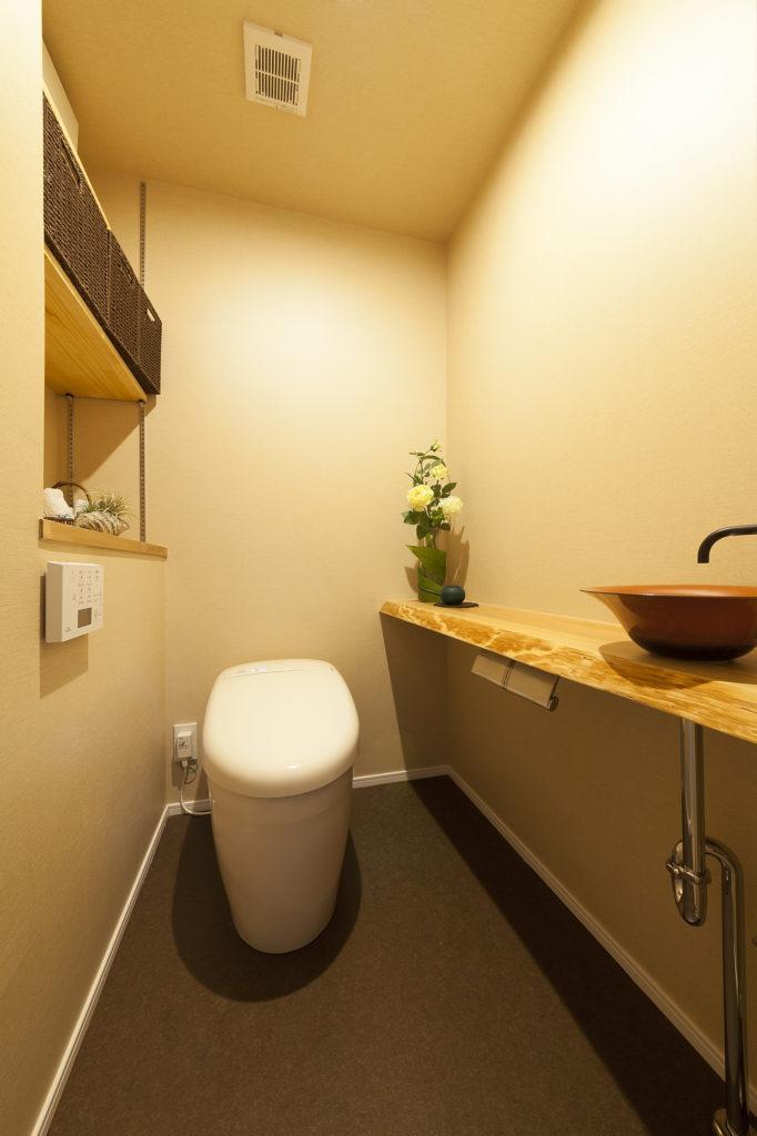 トイレカウンターは手摺代わりの棚